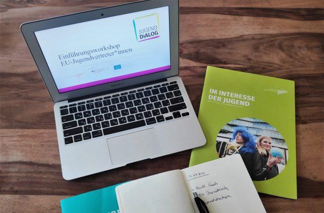 Online-Einführungsworkshop mit den EU-Jugendvertreter*innen für den 8. Jugenddialog-Zyklus 2020/2021